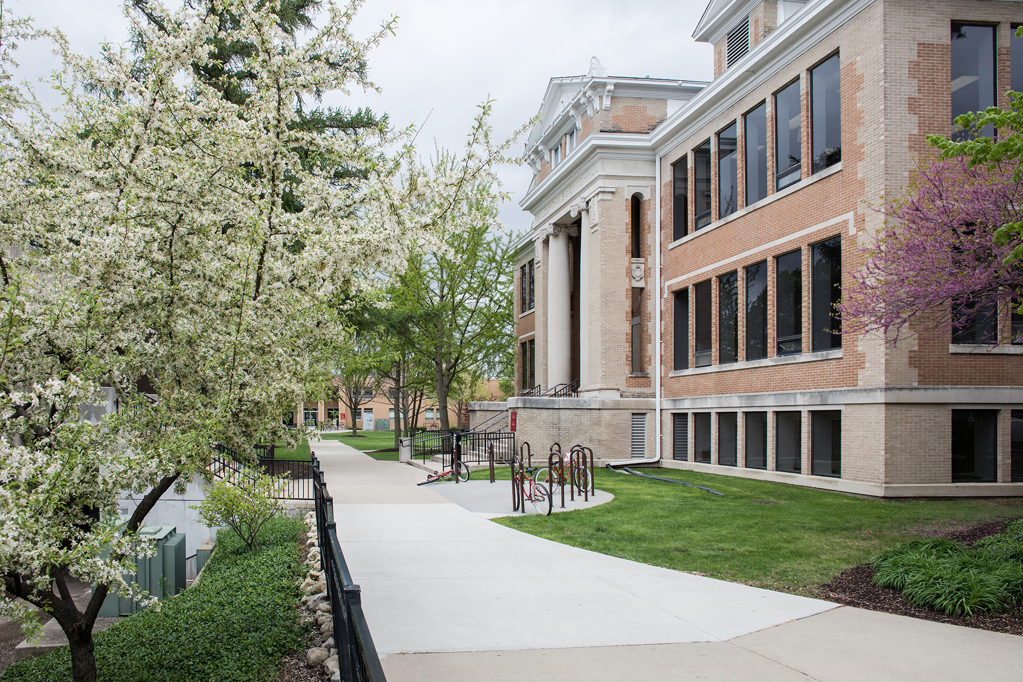 Student walkway at North Central College